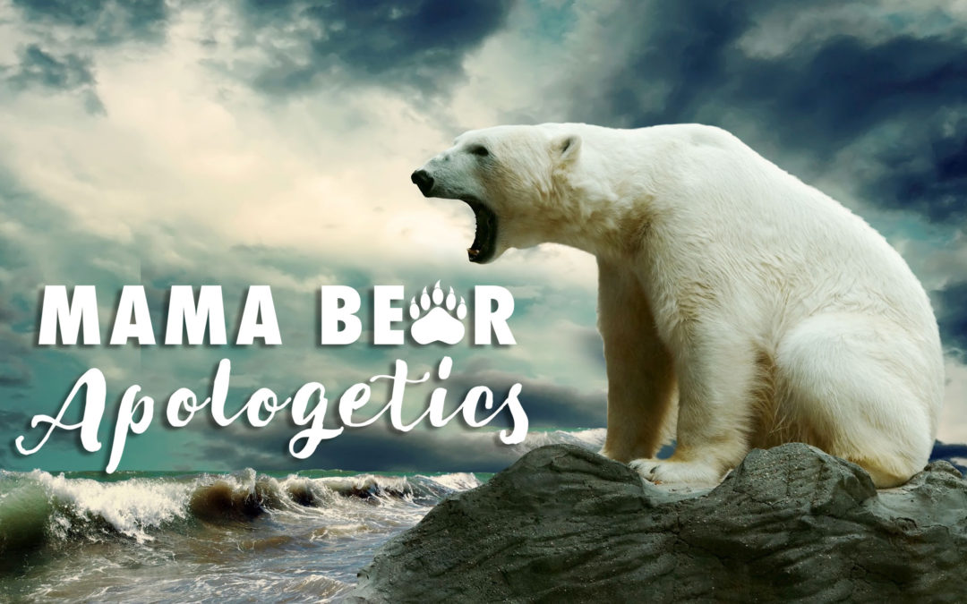 MBA 2: Intro to Mama Bear Part B