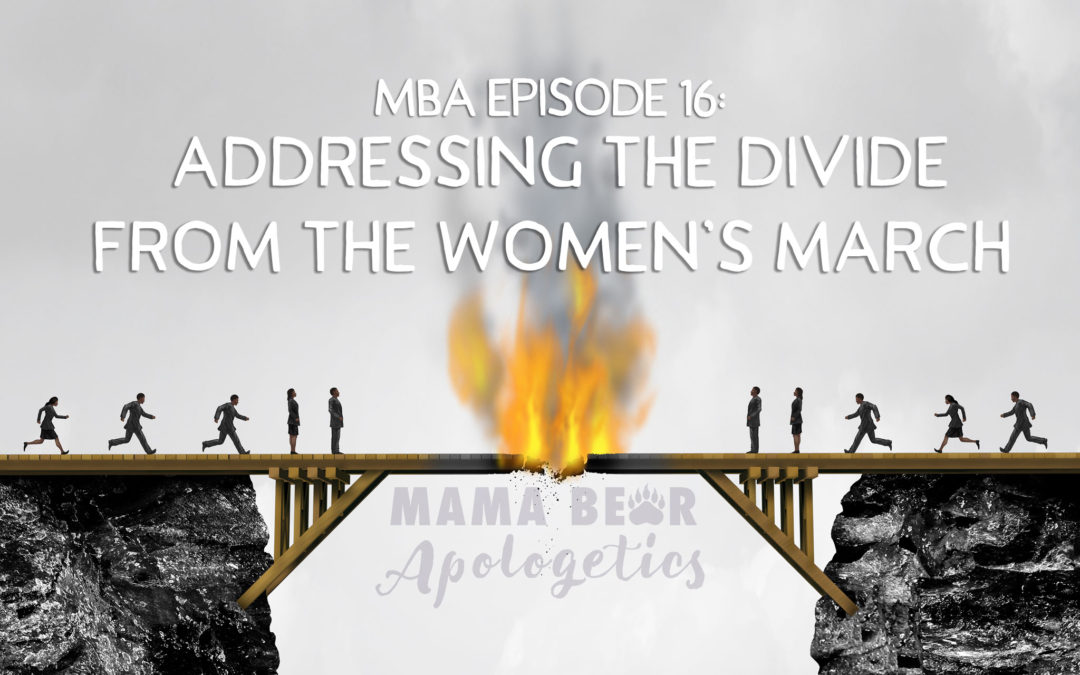 MBA Episode 16: Addressing the Divide From the Women's March