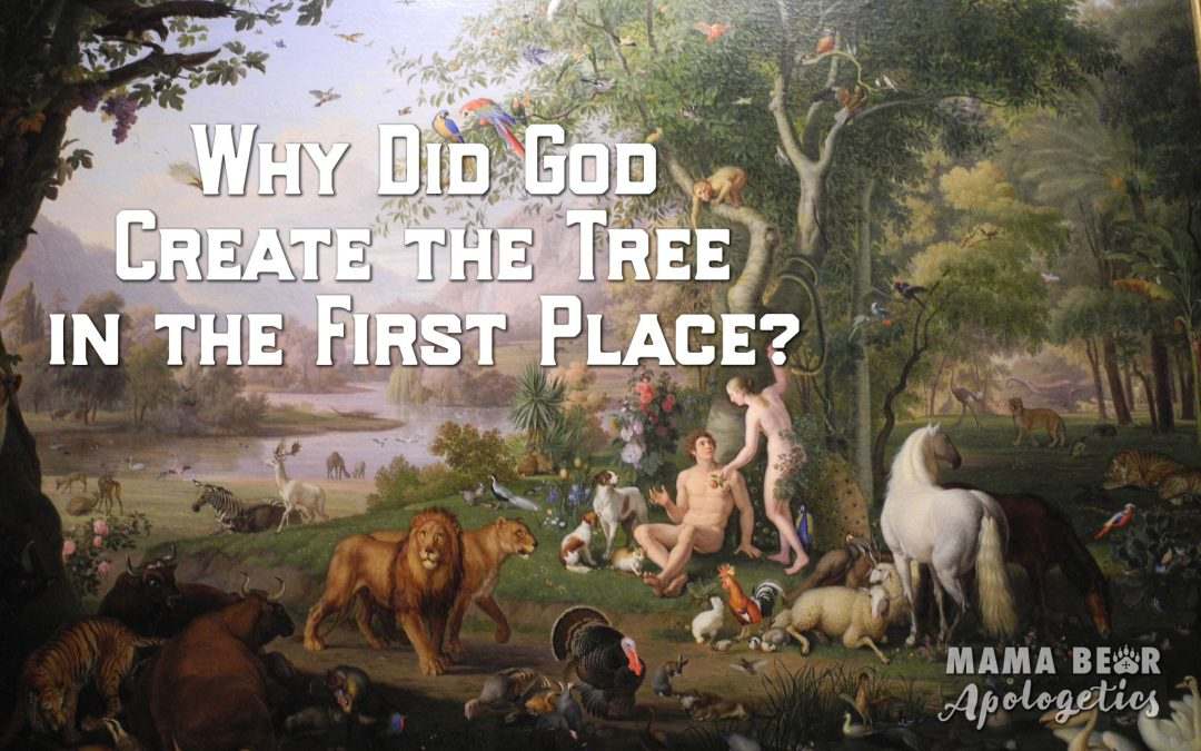 Why did God Create the Tree in the First Place?