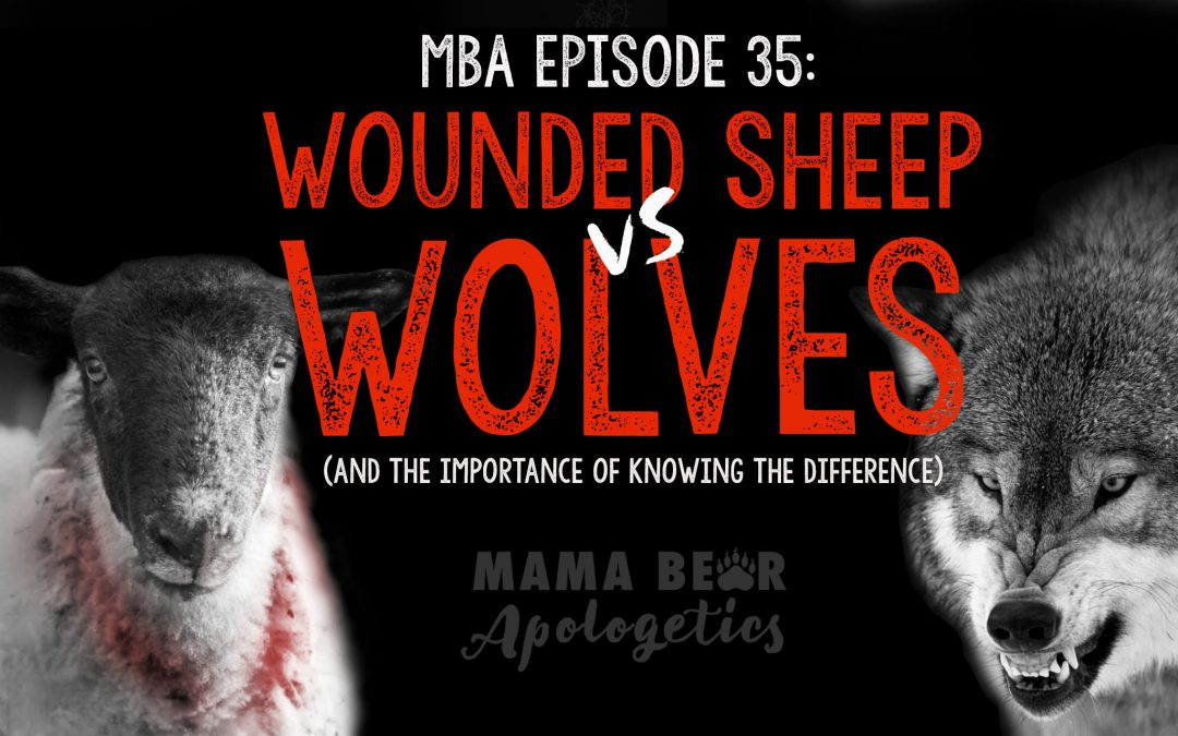 MBA Episode 35: Wounded Sheep vs Wolves (and the Importance of Knowing the Difference)