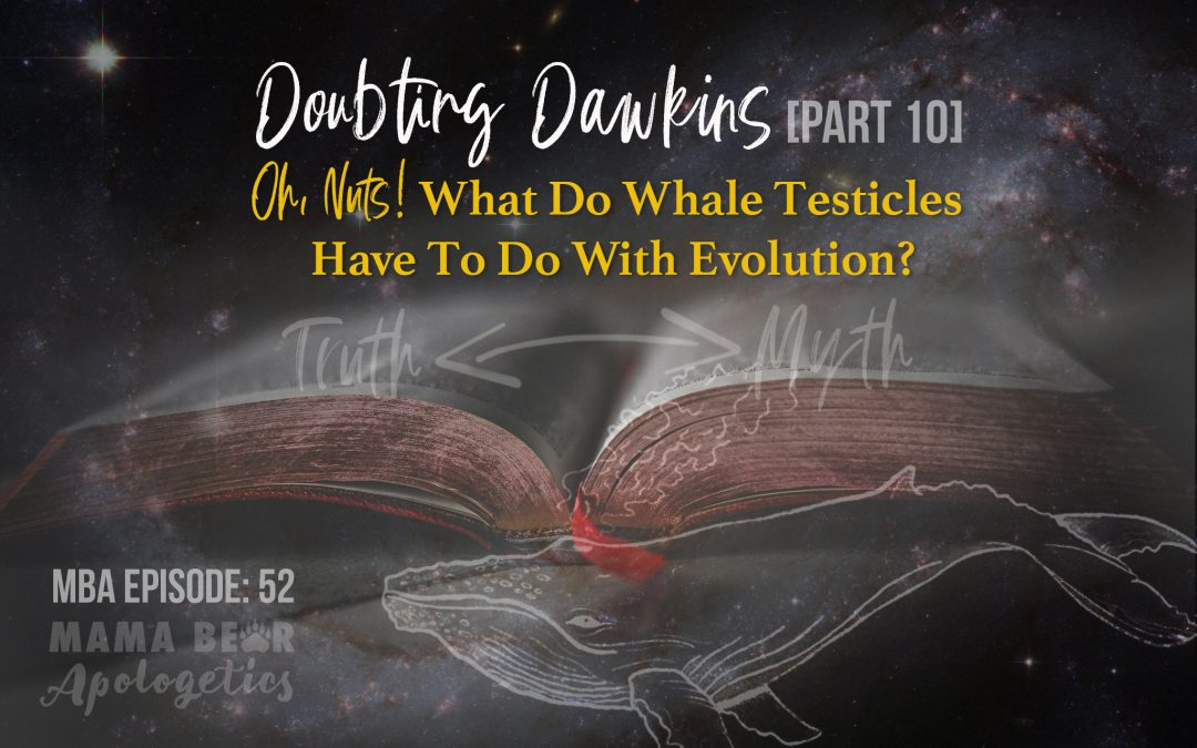 MBA Episode 52: Doubting Dawkins – Oh, Nuts! What Do Whale Testicles Have to Do With Evolution?